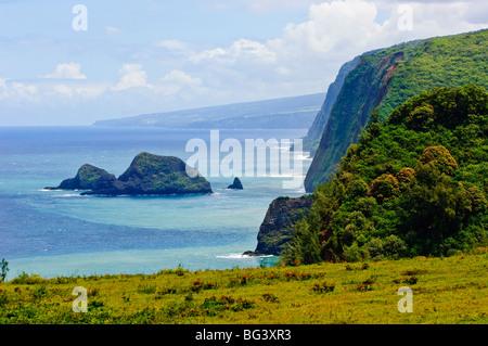 La Vallée de Pololu Kapaau, coast, Big Island, Hawaii, United States of America, Pacifique, Amérique du Nord