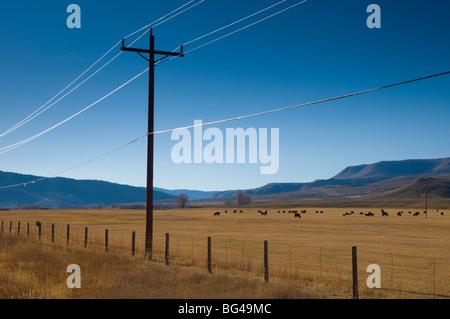USA, Colorado, près de Granby, les terres agricoles Banque D'Images