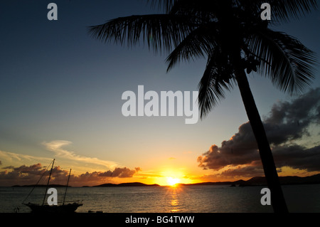 ST JOHN, US Virgin Islands - un beau coucher de soleil dans les Caraïbes avec un palmier et bateau à voile silhoetted contre le soleil couchant.