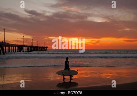 Surfer marcher le long de plage au coucher du soleil près de Venice Fishing Pier, Venice Beach, Californie. Banque D'Images
