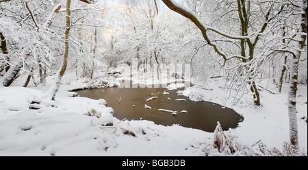 Les fortes chutes de neige dans l'Essex, bois.