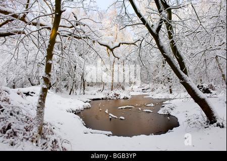 Les fortes chutes de neige dans la région de Thorndon Park dans l'Essex.