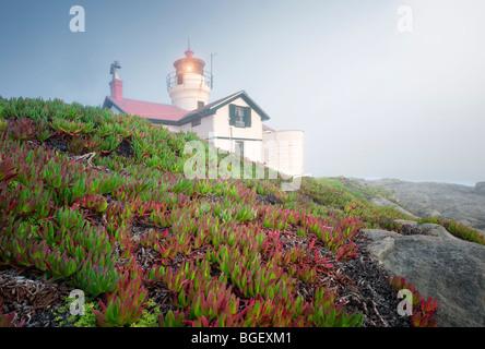 Le phare de la pointe de la batterie avec des fabriques de glace et de brouillard. Californie Banque D'Images