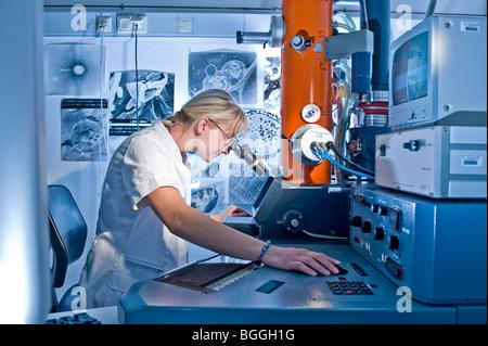 Technicien de laboratoire travaillant sur un microscope électronique de recherche Max-Planck Fermentation;le repliement Banque D'Images