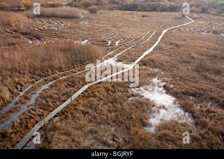 Pont-jetée en bois en terrain marécageux à seashore menant à la tour d'observation d'oiseaux Banque D'Images
