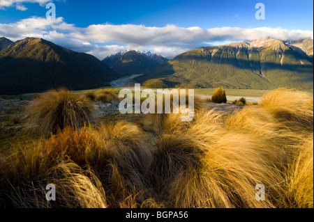 Arthur's Pass National Park, South Island, New Zealand Banque D'Images