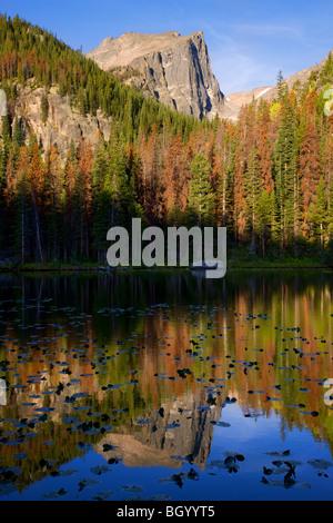 Lac de nymphe, Rocky Mountain National Park, Colorado. Banque D'Images