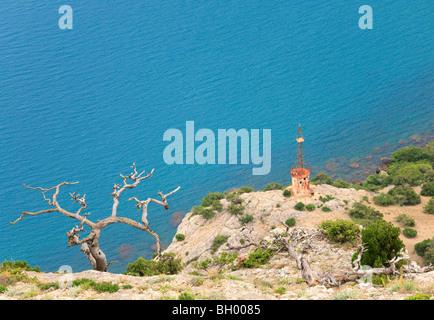 Juniper tree flétri et old rusty gyrophare à flanc de ('Novyj Svit', Crimea, Ukraine). Banque D'Images