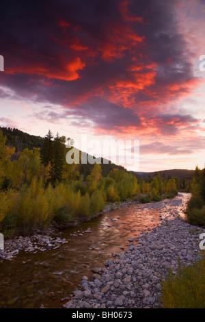 Anthracite Creek avec couleurs d'automne au coucher du soleil le long de Kebler Pass Road, Colorado. Banque D'Images