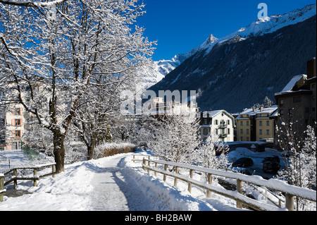 Arbres couverts de neige sur un chemin près du centre ville, Chamonix Mont Blanc, Haute Savoie, France