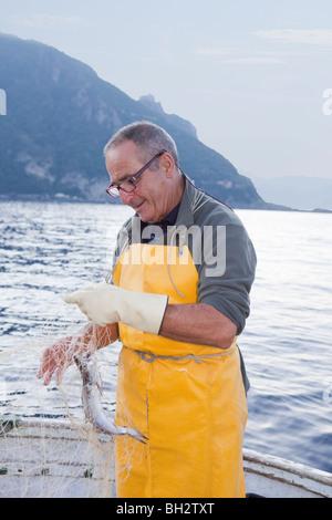 Pêcheur sur le bateau, les poissons en filet Banque D'Images
