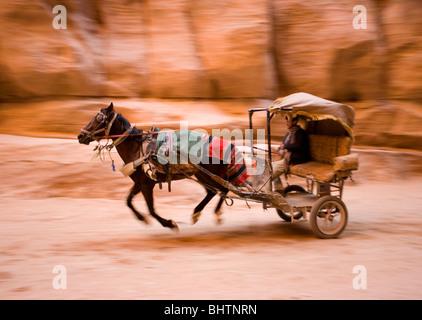 Cheval et un chariot à cheval dans le Canyon de Al-Siq au Secrétariat du bâtiment à la ville antique de Petra à Banque D'Images