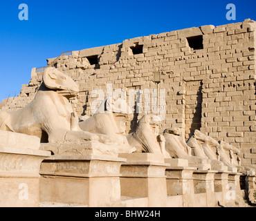 Ram de statues dans le temple de Karnak à Louxor, Egypte. Banque D'Images