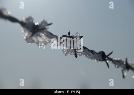 Barbelés glace neige frost spike de récupération d'eau de métal rouille twist bleu ciel tendu ouch blck sûr protéger Banque D'Images