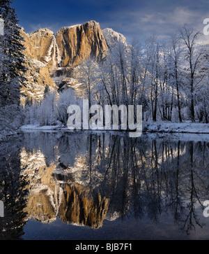 Arbres couverts de neige et de Yosemite et le point de chute supérieur reflète dans la Merced river en hiver yosemite national park california usa