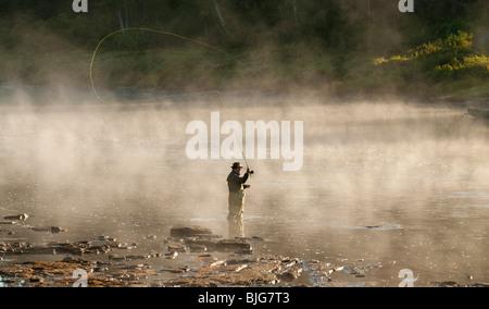 Nouveau-brunswick, Fly Fisherman casting pour le saumon atlantique dans la brume matinale sur la rivière Miramichi Banque D'Images