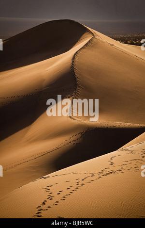 Dunes de sable de Stovepipe Wells dans Death Valley National Park, California, USA.