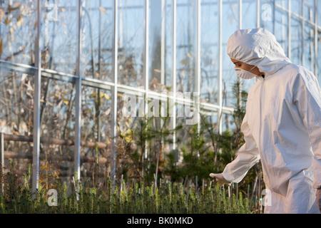 Chercheur scientifique à nettoyer suit working in greenhouse