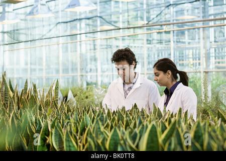 Les scientifiques qui travaillent dans des émissions de
