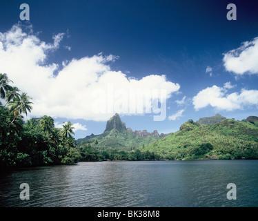 Baie de Cook, Moorea, îles de la société, Polynésie Française, Pacifique Sud, du Pacifique Banque D'Images