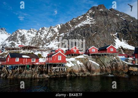 En bois rouge traditionnelle Rorbu cabanes de pêcheurs dans le village de Å sur l'Île Moskenesoya dans îles Lofoten Banque D'Images