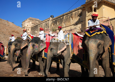 Cornacs et les éléphants, Fort Amber Palace, Jaipur, Rajasthan, Inde, Asie Banque D'Images