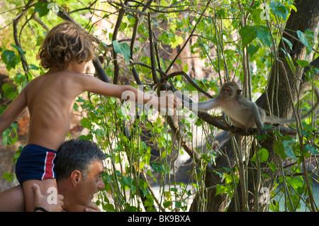 Les touristes avec des singes à Laem Phra Nang Beach, Krabi, Thaïlande, Asie