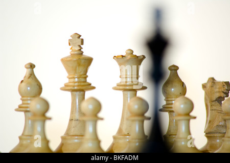 Échecs, roi noir in front of white chess pieces on chess board