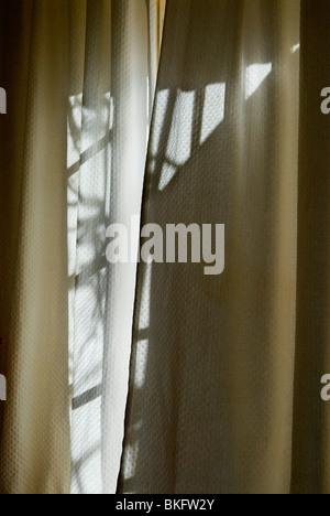 Motif dans lumière du soleil à travers les fenêtres rideau. Banque D'Images