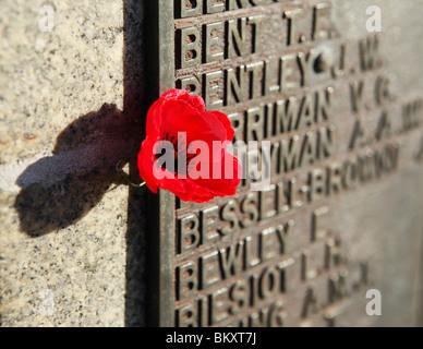 Une plaque à côté du coquelicot du souvenir sur un mémorial de guerre. Banque D'Images