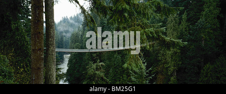 Capilano Suspension Bridge, Vancouver, British Columbia, Canada, Amérique du Nord Banque D'Images