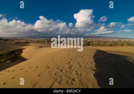 Les célèbres dunes de sable de Maspalomas, Gran Canaria, Îles Canaries, Espagne, Europe Banque D'Images