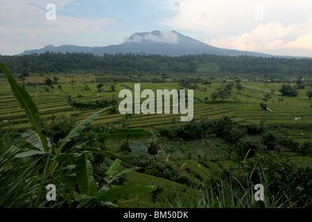 Les rizières en terrasses près de Tirtagangga avec le pic volcanique de Lempuyang Gunung sur l'horizon à Bali, Indonésie. Banque D'Images