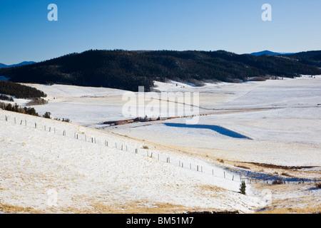 Vue vers le sud de Kenosha Pass, Pike National Forest, off Rt. 285, Colorado, USA Banque D'Images