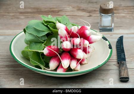 Une bande de Petit-déjeuner français Frais Radis dans un plat en émail, avec un couteau et de sel Pot sur une table Banque D'Images