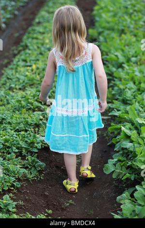 Robe fillette en marchant à travers champs Banque D'Images