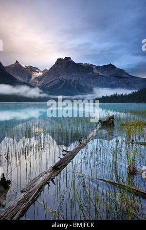 Emerald Lake à l'aube avec les pics du président au-delà de la plage, le parc national Yoho, Colombie-Britannique, Banque D'Images