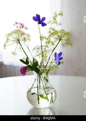 La Scandinavie, Suède, Pays-Bas, vue de vase à fleurs sur table