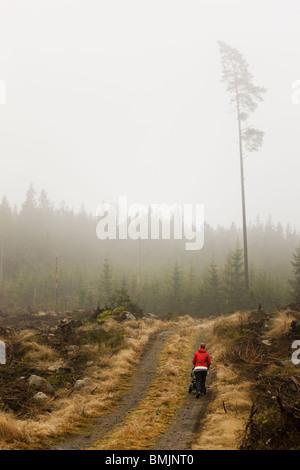 Péninsule scandinave, en Suède, Malmö, Sodermanland, femme marche sur un chemin de terre