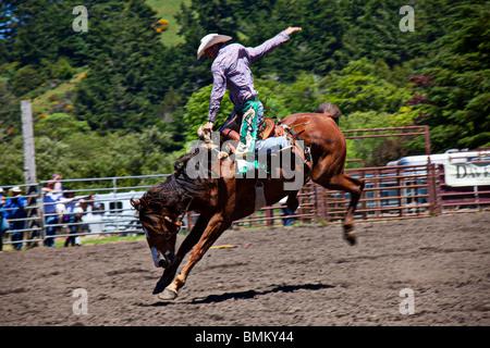 Cowboy riding horse Banque D'Images