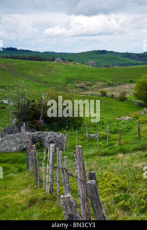 Paysage rural dans le Massif Central, Auvergne, France