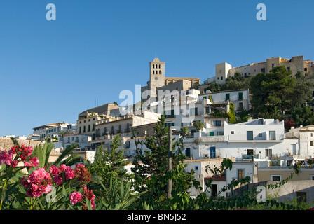 Cathédrale Ibiza ville, Ibiza, Baléares, Espagne Banque D'Images