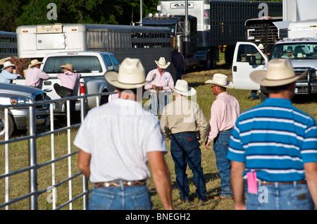 Les membres de l'érythroblastopénie Rodeo Cowboy cas de Bridgeport, Connecticut, USA