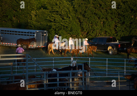 Les membres de l'érythroblastopénie Cowboy riding horses backstage rodeo au cas de Bridgeport, Connecticut, USA