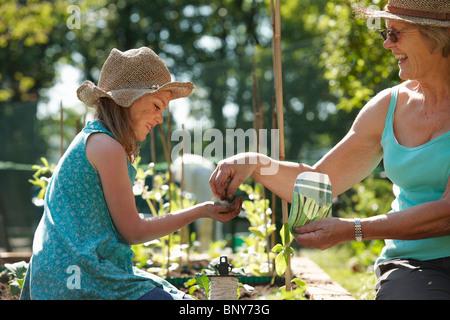 Grand-mère fille remise des semences à planter Banque D'Images