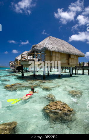 La plongée sur l'île de Manihi, Manihi, Polynésie Française