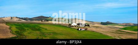 Andalousie, Espagne; une vue sur le paysage typique de l'andalousie près de Arcos de la Frontera Banque D'Images
