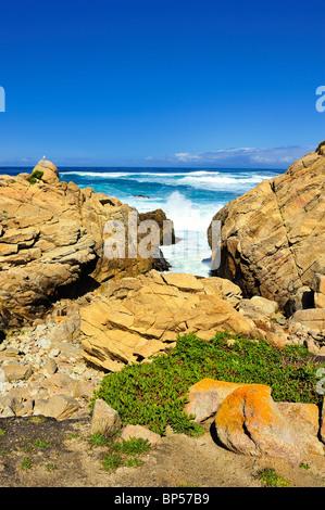 Les vagues déferlent contre des roches, Pebble Beach en Californie le long 17-Mile Drive avec petite mouette et Banque D'Images