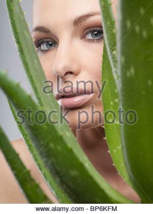 Une femme à la recherche à travers les feuilles d'aloe vera Banque D'Images