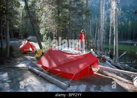 Tentes de camping sauvage, mis en place au Camping de tentes dans la forêt de la côte ouest, l'île de Vancouver, Banque D'Images